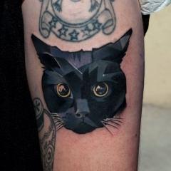 Кот с тату фото