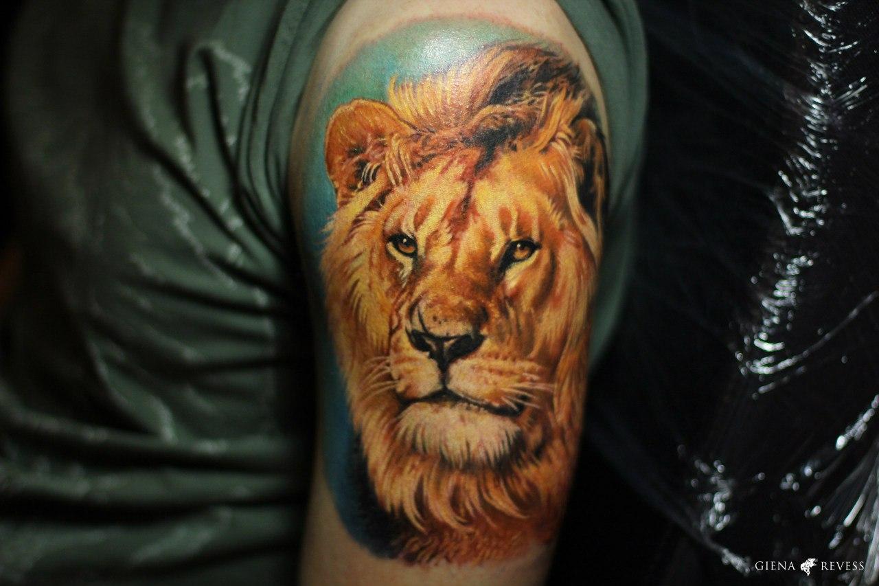 Тату виде льва фото