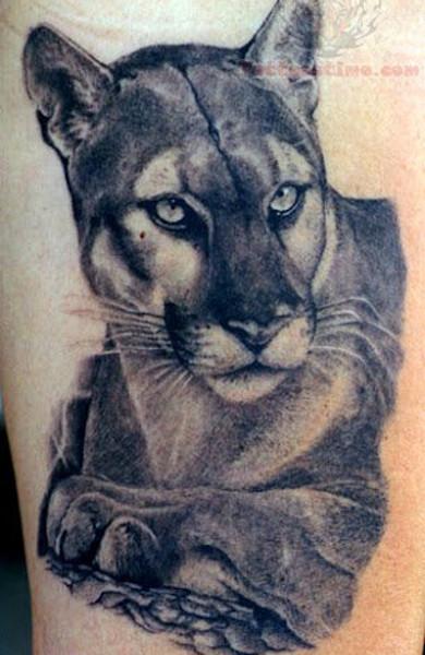 Татуировка пума