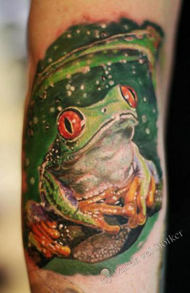 Татуировка лягушка и эскиз