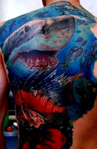 эскиз тату акула