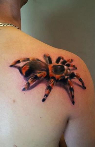 spider-032.jpg