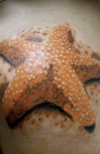 Татуировка морская звезда
