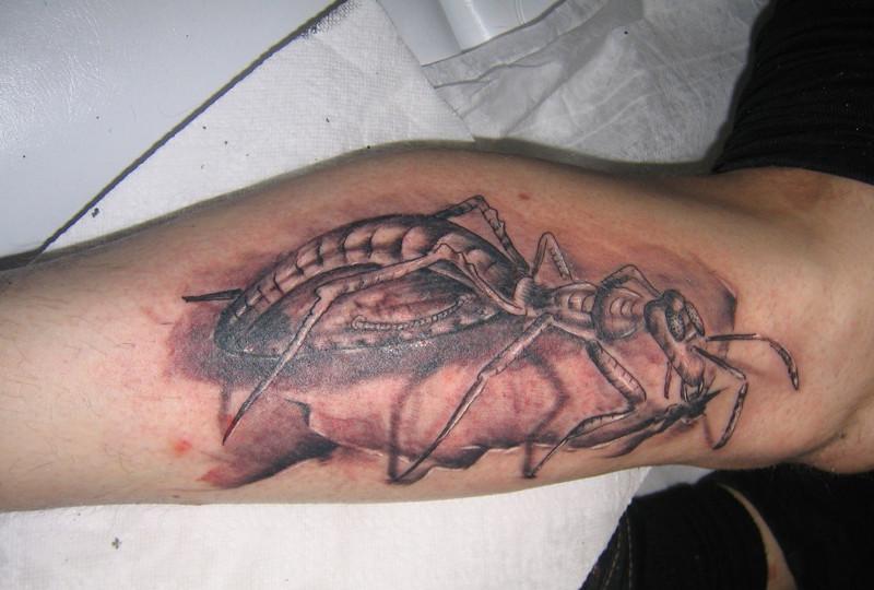 Татуировка муравей